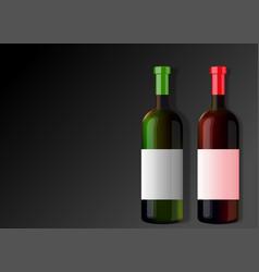 two bottles wine vector image