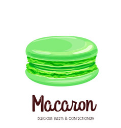 mint macaron vector image vector image