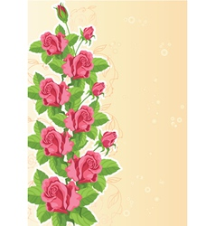 rose funny card vector image vector image