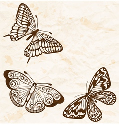 vintage background with flying butterflies vector image