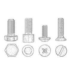 metal bolts and screws hand drawn sketch vector image vector image