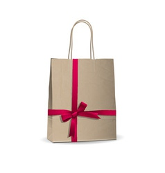 Empty shopping brown bag vector image vector image