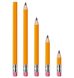 pencils different lengths v vector image vector image