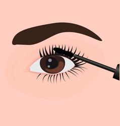 a girl applying mascara on to her eye vector image