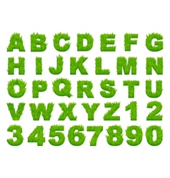 Green grass alphabet with letters and numbers vector image