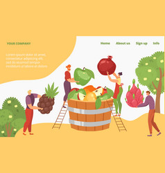 Harvest tropical organic natural fruit tiny vector