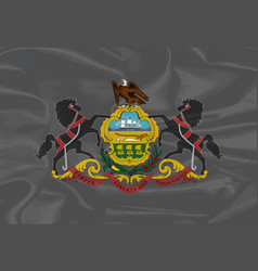 Pennsylvania silk flag vector