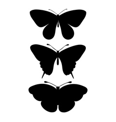 set black silhouettes butterflies vector image