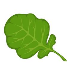 green fresh leaf vector image