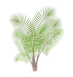 Bamboo palm icon cartoon style vector