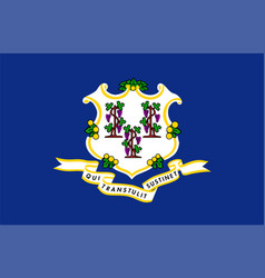 flag usa state connecticut vector image
