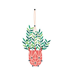 Macrame plant hangers hobconcept flat vector