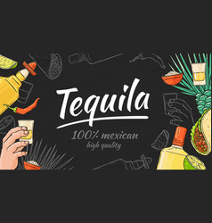 tequila hand drawn background with mexican taco vector image
