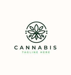 Cannabis leaf logo template vector
