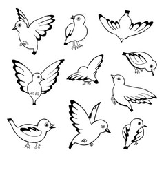 hand drawn sketch of birds isolated on vector image