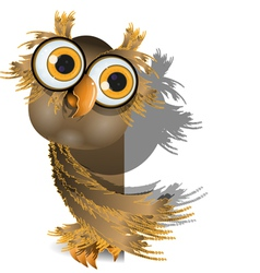 owl on white vector image