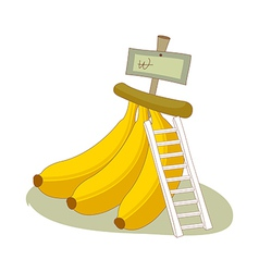 The bananas are placed vector