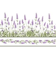 The Lavender Seamless frame line vector