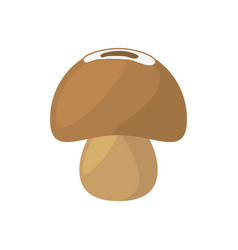 mushroom food healthy product vector image