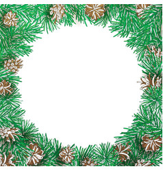 pine branch and cone round frame vector image
