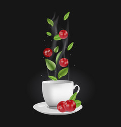 cranberry tea vector image