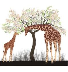 Giraffe and tree vector image vector image