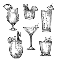 Alcoholic cocktail hand drawn sketch set vector
