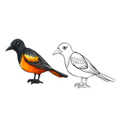 doodle animal for bird vector image