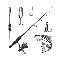 fishing tackle fresh seafood sturgeon template vector image