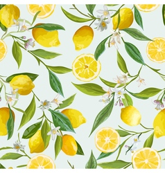 Seamless Pattern Lemon Fruits Background Floral vector