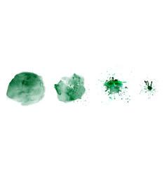 set hand-painted splash green color watercolor vector image