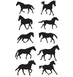 Set of black trotting horses silouettes vector