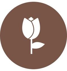 Tulips in pot vector