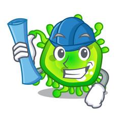 Architect cartoon microba virus bacteria in body vector