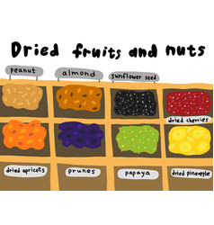 Street market sketch dried fruits and nuts vector