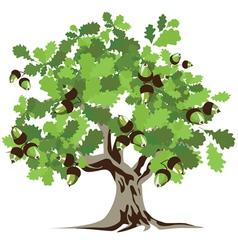 big green oak tree vector image
