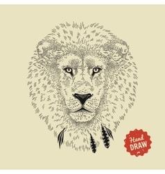 sketch of a lion face Lion head front vector image