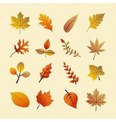 Vintage autumn season tree leaves set EPS10 file vector image