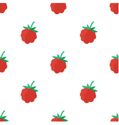 Seamless pattern with raspberry vector