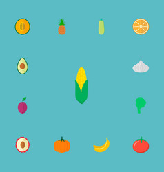 set of berry icons flat style symbols with lychee vector image