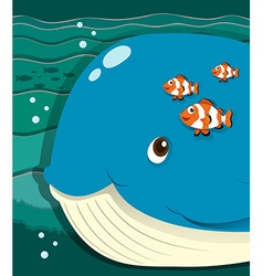 Whale and clownfish swimming vector image