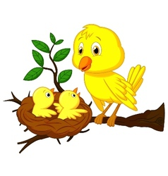 Cartoon Mother and baby bird vector image