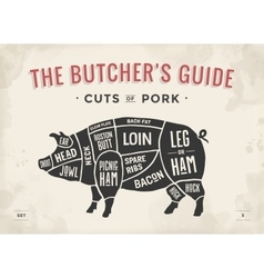 Cut of meat set poster butcher diagram scheme vector