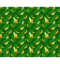 bananas pattern green background vector image