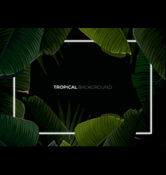 Dark tropical summer design with banana palm vector