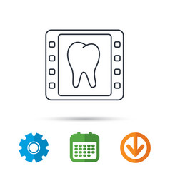dental x-ray icon orthodontic roentgen sign vector image