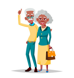 elderly couple grandfather and grandmother vector image