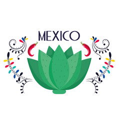 Mexican agave floral decoration traditional card vector