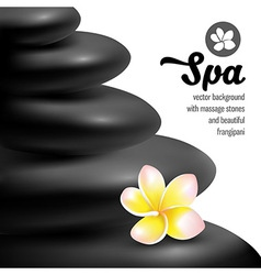 Spa still life vector