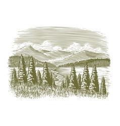 woodcut vintage wilderness vector image